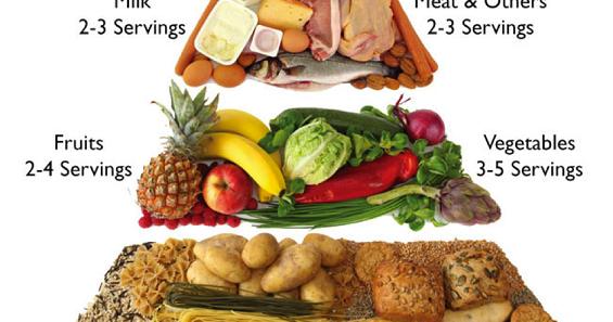 So Simple So Fun Apa Saja Menu Makanan 4 Sehat 5 Sempurna Yang Baik Bagi Kesehatan