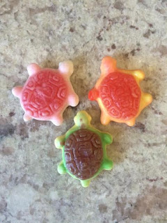 gummy filled sea turtles from candyclub