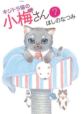 キジトラ猫の小梅さん raw zip dl