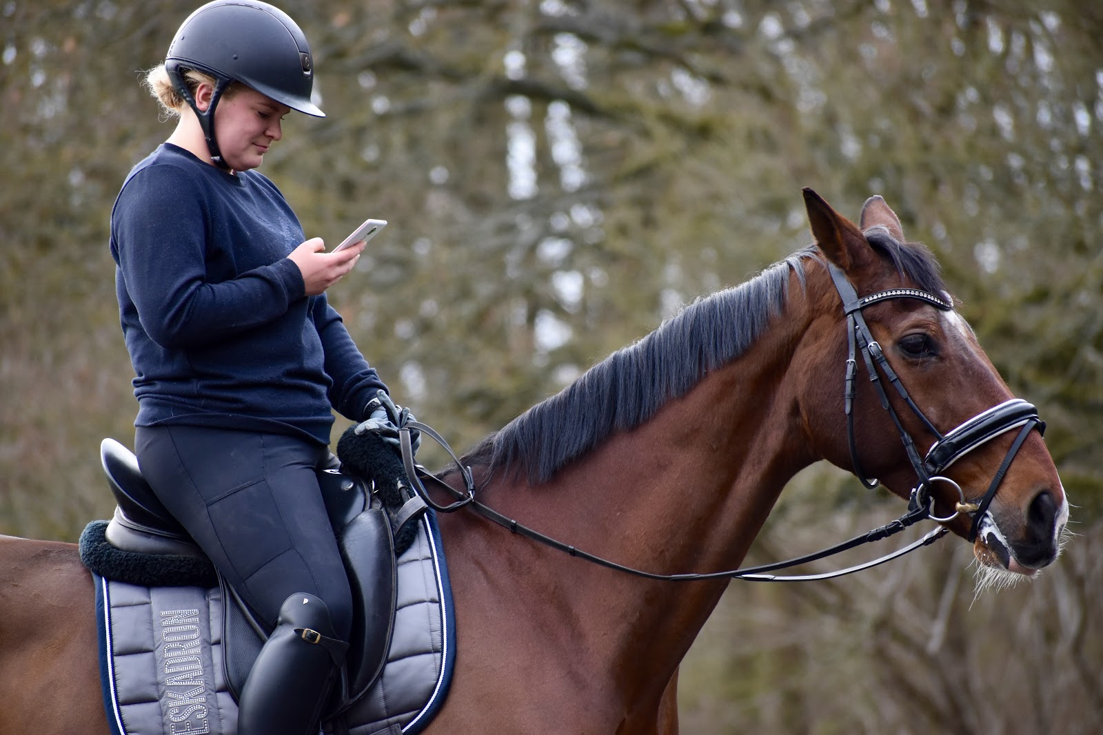 Roosa's Horsey Life: Equilab app review