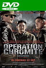 Operación oculta (2016) DVDRip