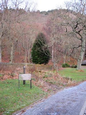 Craigendarroch Walk, Ballater, Deeside