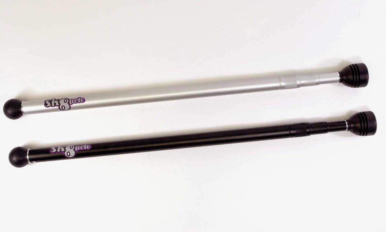 sk8pole longboard stick