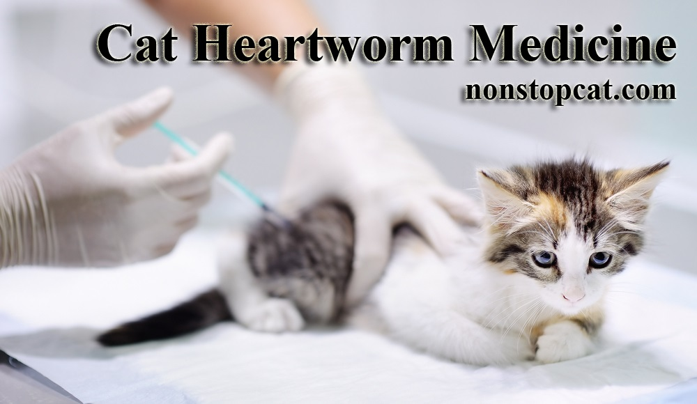Cat Heartworm Medicine