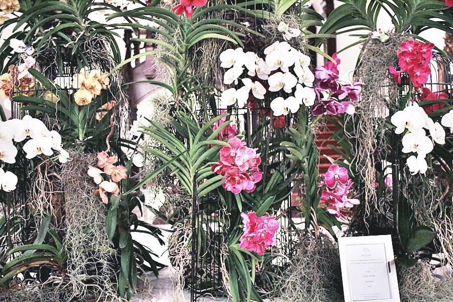 flowers raffles hotel lobby
