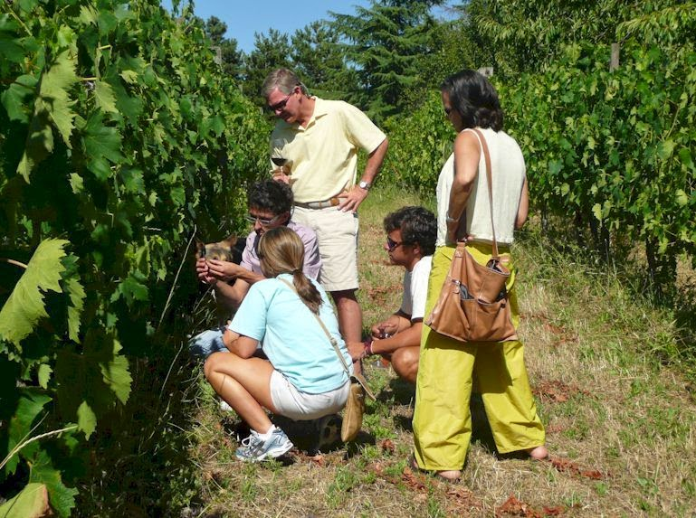 wine tasting tour in Tuscany, Italy