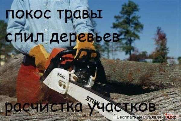 Расчистка участков, покос травы, спил дерева, вывоз мусора без выходных Одесса