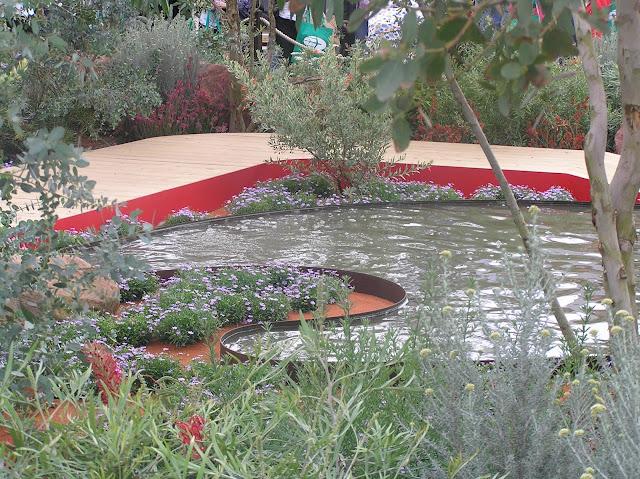 ogród australijski na wystawie Hampton Court Flower Show