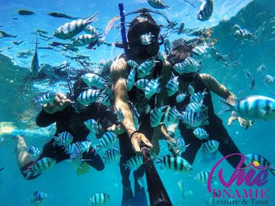 Snorkeling di Pulau Perhentian