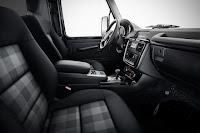 Mercedes-Benz G 350 d Professional Limited Edition (2017) Interior