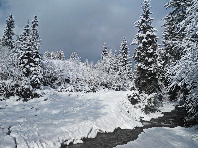 Зимний Буковель
