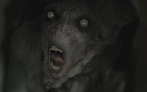 halloween tunnel of terror