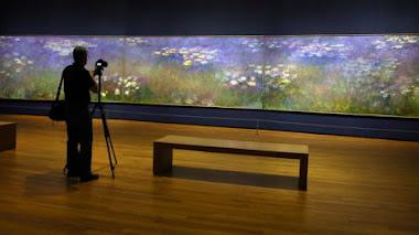 Agapanthus Triptych: joya de la exposición 'Painting the Modern Garden: Monet to Matisse'