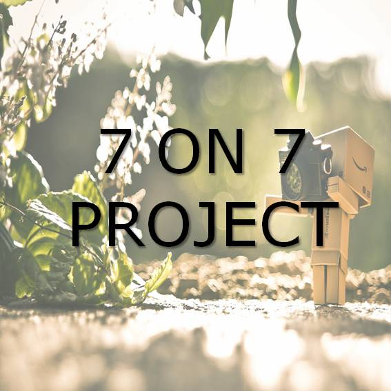 7 on 7 Project