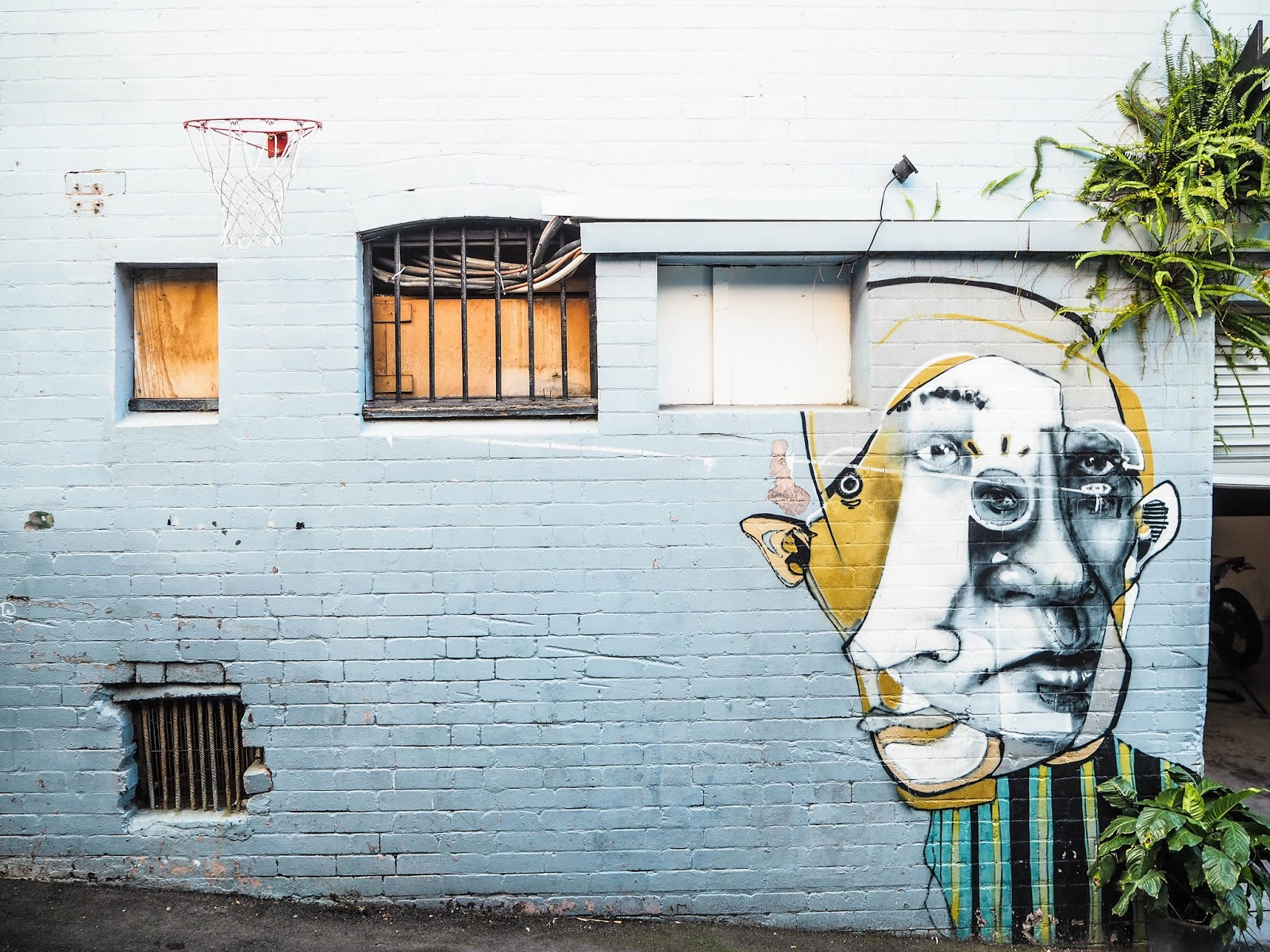 Street art in Paddington, Sydney