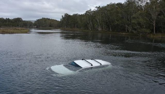 Encuentra una araña en su auto... lo hunde en el lago