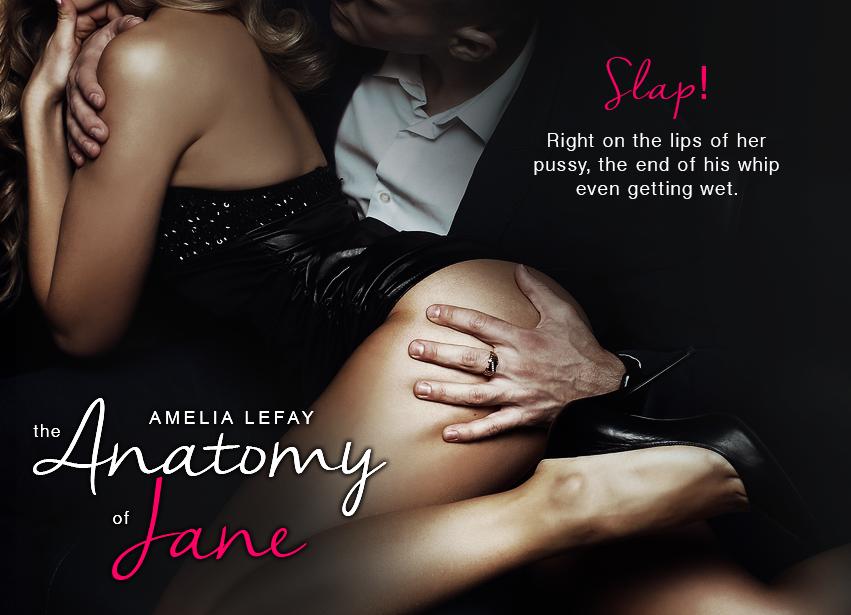 Book Tour; The Anatomy of Jane