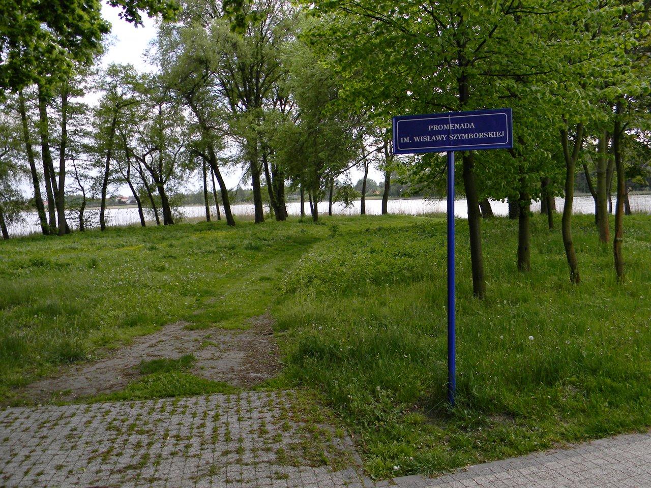 jezioro kórnickie