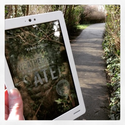 A pale hand holds a white Kobo up against a concrete path completely enclosed by the trees to either side of it. Sated's cover appears on the ereader's screen, and the reflection of the branches above overlays a picture of a man's brown-skinned chest, shirtless beneath an open grey hoodie.