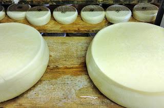 tome de savoie au fenouil, la laiterie de paris, fabrication tome, faire du fromage, blog fromage, blog fromage maison, tour du monde du fromage, voyage fromage, fromage paris, gaec du vent des cîmes