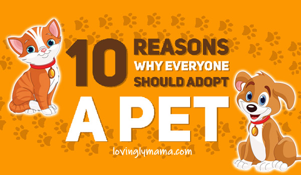 reasons why you should adopt a pet - pet adoption - family - home - kids