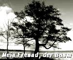 http://jahreszeitenbriefe.blogspot.de/2016/03/mein-freund-der-baum-37.html