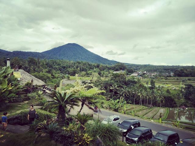 Kafe Hits di Jatiluwih Bali