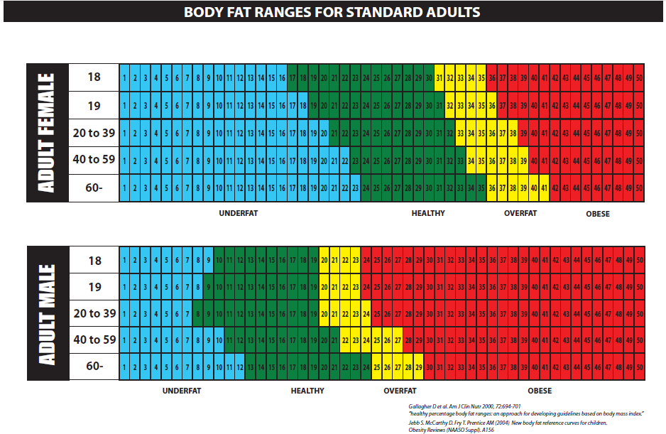 ideal body fat percentage male age