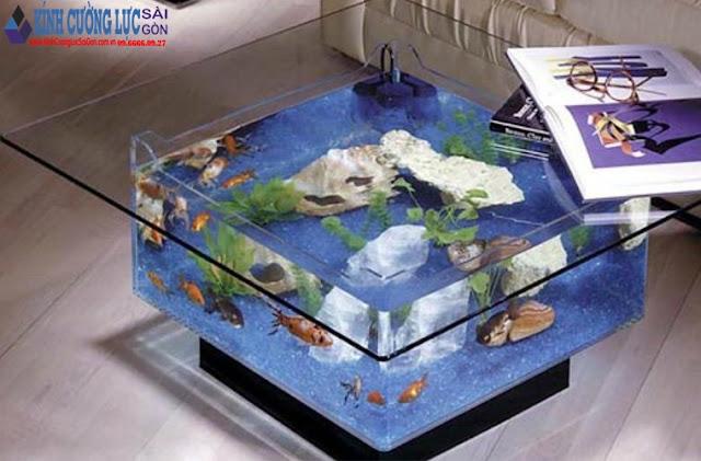 Các Loại Hồ Cá Kính Cường Lực