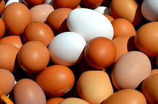 white eggs or brown eggs difference