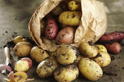Nên đắp mặt nạ khoai tây mấy lần một tuần