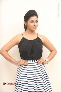 Telugu Actress Kruthika Jayakumar Stills in Short Dress at Intlo Deyyam Nakem Bhayam Success Meet  0003.JPG