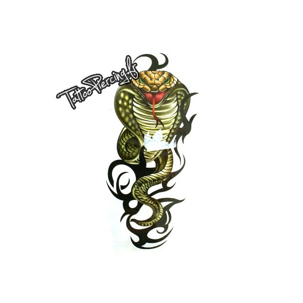 Serpent dessin fonds d 39 cran hd - Dessin de serpent cobra ...