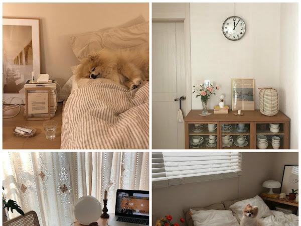 Nuovi minimalismi e nuove ossessioni: i profili instagram coreani