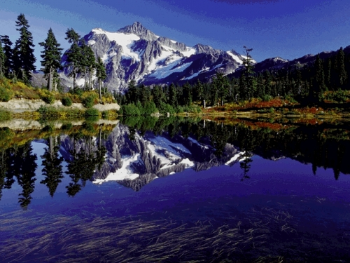 Every One Wallpapers Beauty Of Kashmir Wallpapersimages-2264