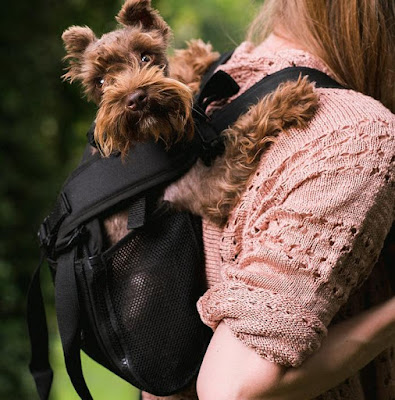 Ruffit Dog Backpack