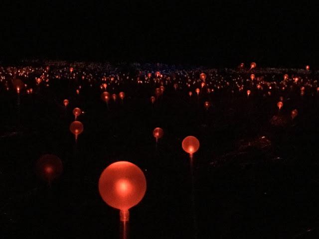 Field of Light Uluru Australia