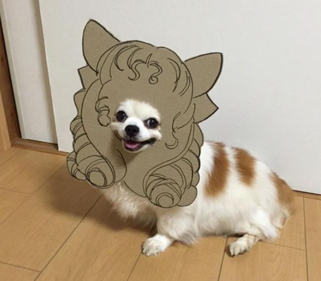 пёс и японка
