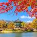 Yuk Ikut Pelatihan Bahasa Korea di Korea Selatan
