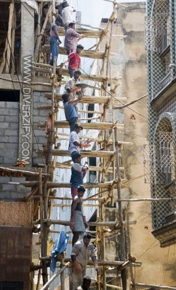Cute Tiger Cubs Hd Wallpapers Funny Wallpapers Hd Wallpapers Bamboo Scaffolding In Asia