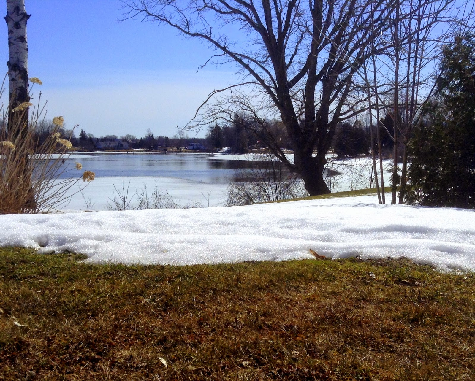 www.highheelsinthewilderness.blogspot.com Rideau River in spring
