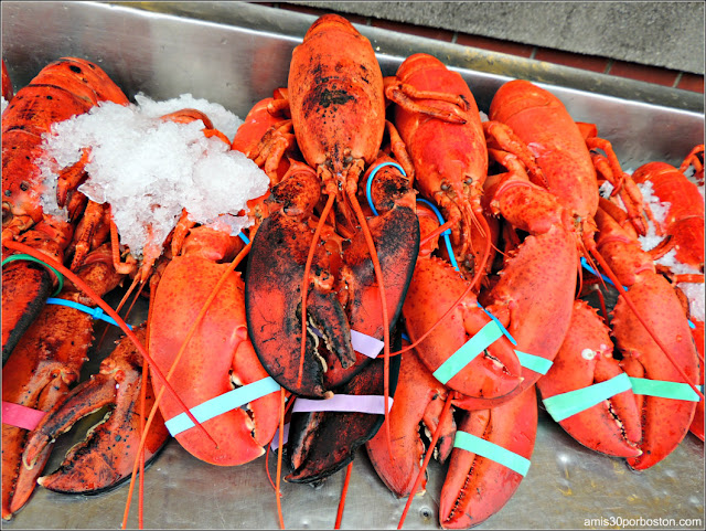 Lobster Shacks en Massachusetts: Langostas del Woodman's of Essex