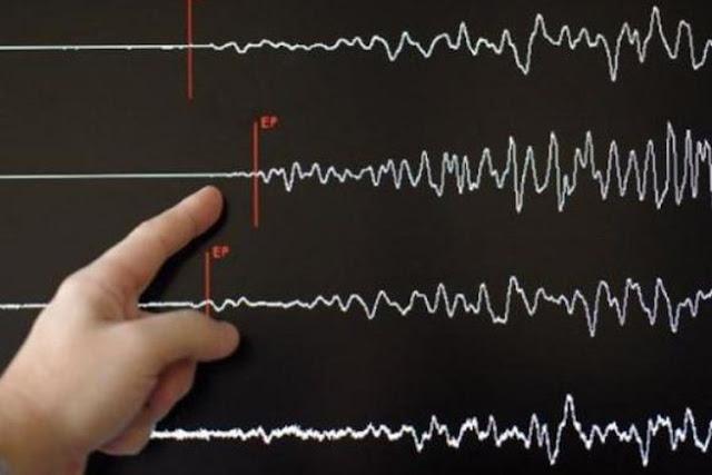 Gempa Magnitudo 6,4 Guncang Situbondo, Getaran Terasa dari Malang hingga Bali