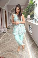 Nikki Galrani at Prema leela pelli gola trailer Launch ~  Exclusive 074.JPG