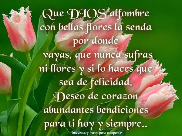 Imagenes De Flores Bonitas Con Frases Imagui