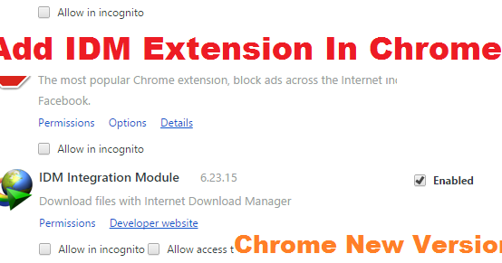 add idm extension in chrome new version