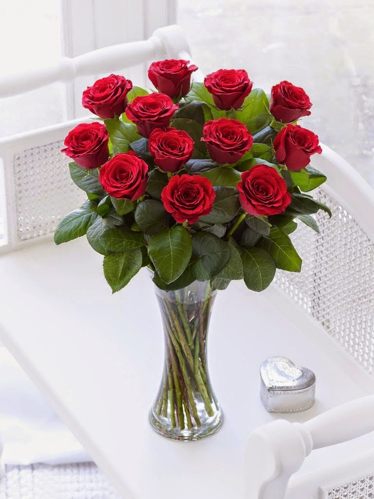 Send a Red Rose Pictures to girlfriends on New Year 2018