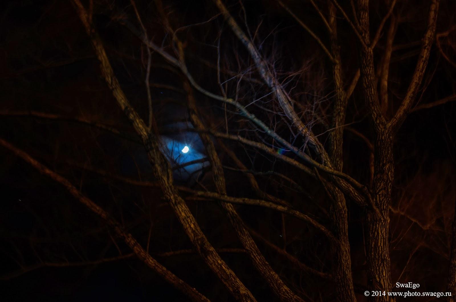 8 марта, ночь, Колпино