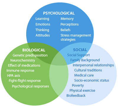 the bio psychosocial model in healthcare We first outline the dynamic biopsychosocial model of health, highlighting its   telemedicine holds promise for improving health care in rural.