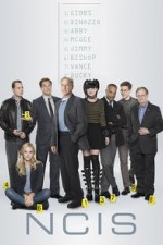 NCIS S16E14 Once Upon A Tim Online Putlocker
